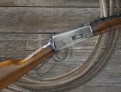 Firearm/Sportsman Industry